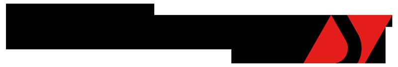Logo Soucy